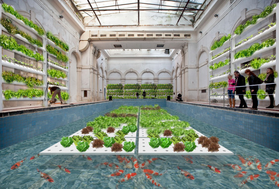 Aquaponic farm in the deteriorating spa