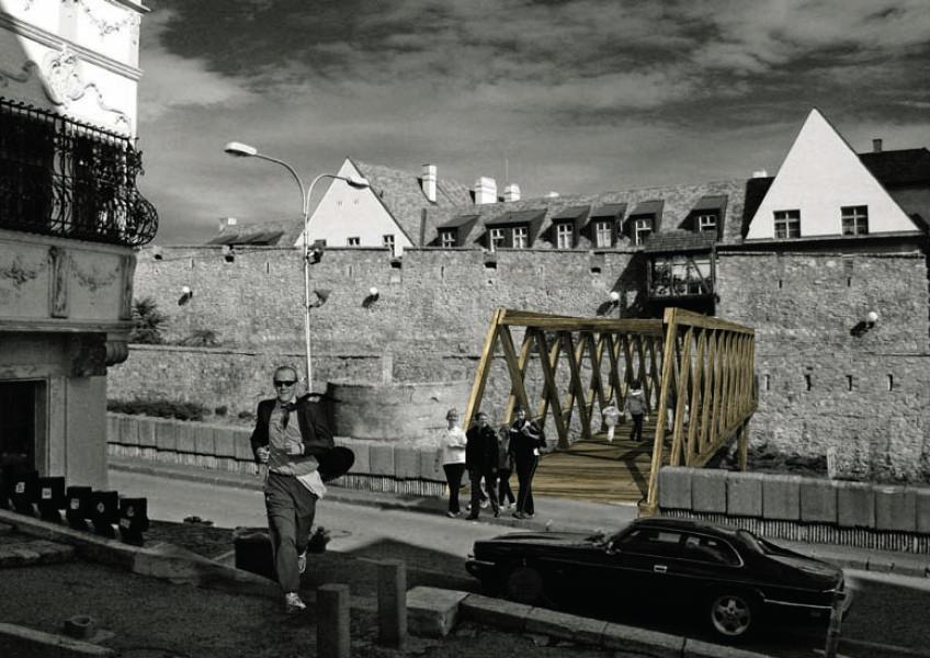 MZ_Ilja Skocek, Rado Zelik_Wooden Bridge